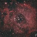 Rosette nebula,                                pfloyd36069