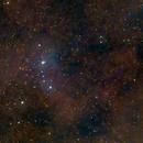 Lambda Orionis Region (Meissa, Collinder 69, Sh2-264),                                Daniel Erickson