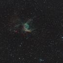 NGC2359 - Thor's Helmet,                                Siegfried
