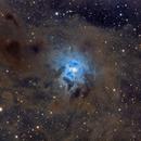 NGC 7023 Deep Sky West,                                Craig Prost