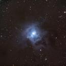 Iris Nebula,                                Everett Lineberry