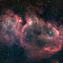 Soul Nebula, Two Panel Mosaic,                                Loran Hughes