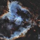 IC 1805 Heart Nebula,                                Rhett Herring