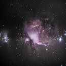 M42 Orion Nebula,                                AstroForum