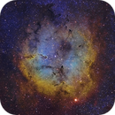 IC1396 and Elephant's Trunk - SHO,                                Jonathan W MacCollum