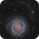 Messier 83 - The Southern Pinwheel and its Tidal Stream,                                Connor Matherne