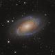 M81,                                paddy36