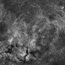 Cygnus core - 9 panels mosaic,                                Alessio Pariani
