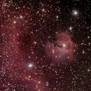 IC 2177,                                DavidLJ