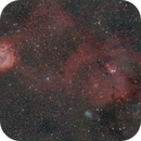 A wide view from the Rosette to the Cone Nebulas,                                Robert Huerbsch