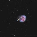 NGC 7008_Fetus Nebula,                                sydney