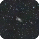 NGC2903,                                Jay Crawford