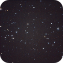 Comet 1P Halley near the Hyades,                                Albert van Duin