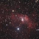 Bubble Nebula - November 6, 2020,                                Adam Drake