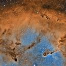 IC 1396 Cropped,                                Dan Wilson