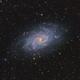 Messier 33 The Triangulum Galaxy,                                Barry Wilson