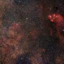 Cat's Paw Nebula and surroundings,                                Hojong Lin