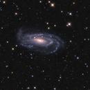NGC 5033,                                Ron Stanley