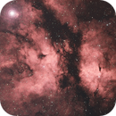 Nebular Complex around Gamma Cigni (Sadr) in Bicolor Palette,                                Angelo F. Gambino