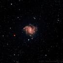 The Fireworks Galaxy - NGC 6946 / Caldwell 12,                                Paul Hutchinson