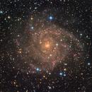 IC 342,                                Gabe Shaughnessy