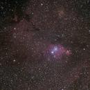 NGC 2264,                                fleur2touraine
