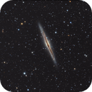 NGC 891,                                Josef Büchsenmeister