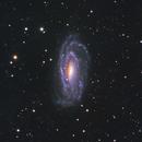 Galaxy NGC5033,                                Simas Šatkauskas
