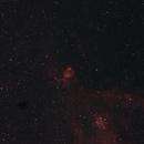 NGC 896 Fish Head Nebula,                                apo20232