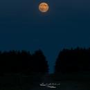 Full moon rising,                                kenthelleland