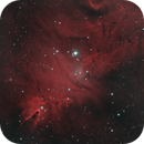 NGC 2264 - Cone Nebula Bicolor,                                Mike Hislope