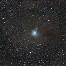 NGC 7023,                                Davide De Col