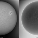 The Sun disk of  November 6, seen in WL.,                                Gabriel - Uranus7