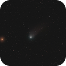 Catalina on the Draco - Camelopardalis border and receding from Earth,                                Tony Cook