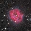 Cocoon Nebula - Rework,                                Thomas Richter