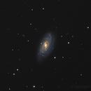 NGC3953,                                Florian APPERT