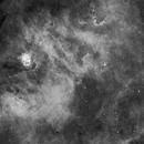 NGC 6604 and Sharpless-54 in H-alpha,                                JNieto