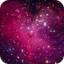 Messier 16; Eagle Nebula,                                Colin
