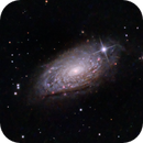 M63 - Sunflower galaxy,                                Richard Kelley