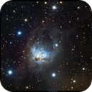 NGC1788 - Fox Face Nebula,                                Dhaval Brahmbhatt