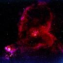 Heart (Ced7/Cr26/IC1805/LBN654/Mel15/Sh2-190) and Fishhead (Ced6/IC1795/LBN645/NGC896) nebulae (c-hos),                                Ram Samudrala