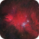 NGC 2264 and Sh2-273,                                pete_xl