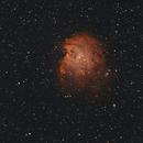 NGC2174 Monkey Head Nebula,                                Marcel & Rahel