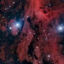 Nebulosa del Pelícano ,                                Federico Margalef (Iko)