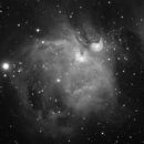 M42 in monochrome,                                Henry Kwok