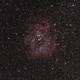 Rosette Nebula,                                Joel Balzan
