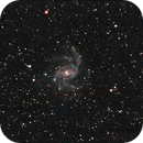 Fireworks galaxy (2 night integration) Sept. 2015,                                JohnP_1