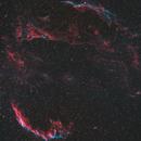 Cygnus Loop,                                Henry Parker