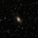 NGC2403,                                Simone Martina