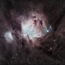 M42, Orion Nebula,                                Markice Stephenson